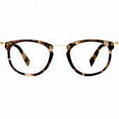 Moriarty Eyeglasses in Burnt Lemon Tortoise for Men