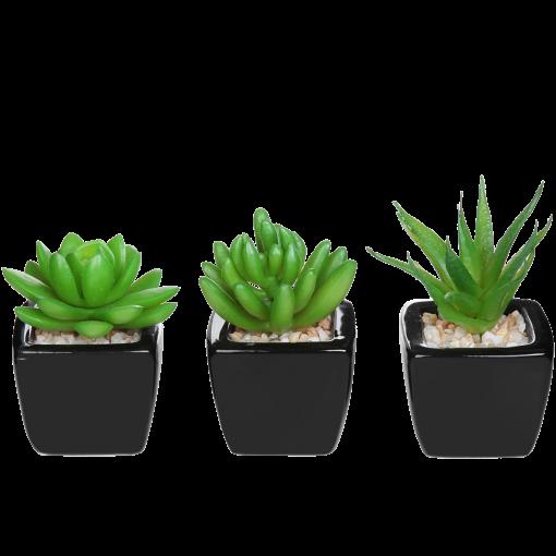 Set of 3 Modern Home Decor Mini Succulent Artificial Plants